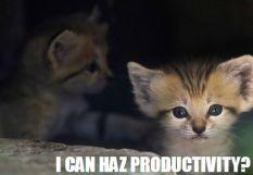 I Can Haz Productivity?